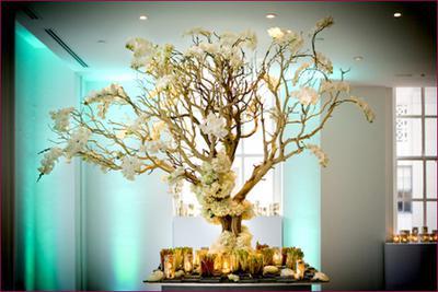 Manzanita Wedding Tree