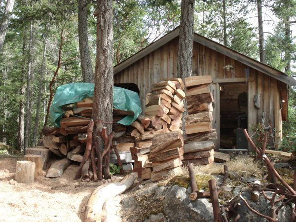 Arbutus-wood-pile